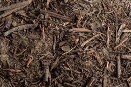 Gardening Planting Soils: 50/50 Planters Mix